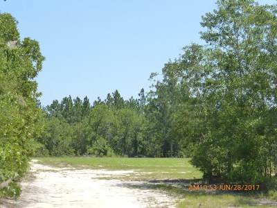 Residential Lots & Land Sold: 528 Big Branch Rd