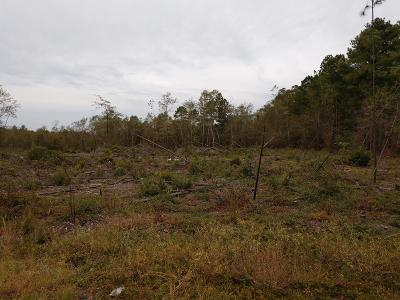 New Ellenton Residential Lots & Land For Sale: Lot 12 Dry Branch Ct