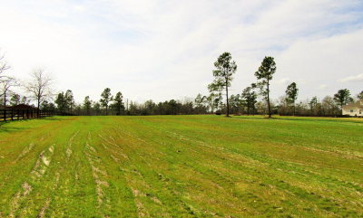 Warrenville Residential Lots & Land For Sale: Lot 60 Sorrell Red Court