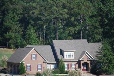 Aiken Single Family Home For Sale: 234 Grassy Creek Lane