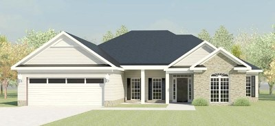 North Augusta Single Family Home For Sale: 334 Bridle Path Road