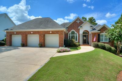 Aiken Single Family Home For Sale: 589 West Pleasant Colony