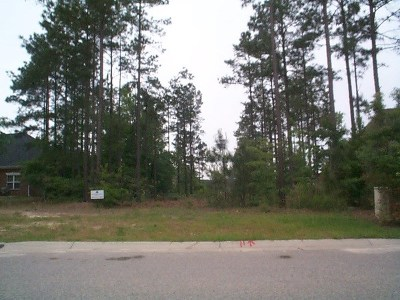 Aiken Residential Lots & Land For Sale: 125 Cameron Alley