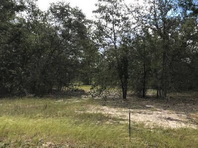 Aiken Residential Lots & Land For Sale: 000 New Holland Road