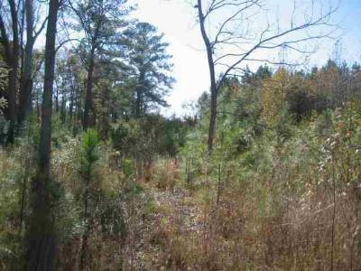 Yemassee Residential Lots & Land For Sale: Riley
