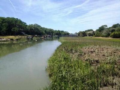 Fripp Island Residential Lots & Land For Sale: 350 Wahoo Drive