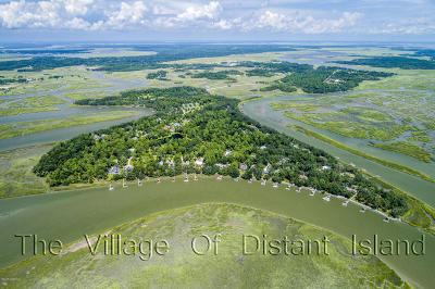 Distant Island Residential Lots & Land For Sale: 825 Distant Island Drive W
