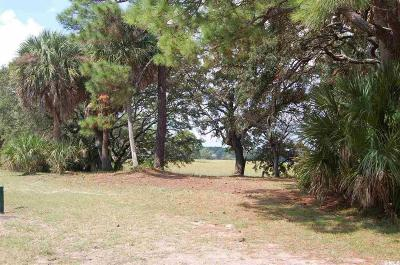 Fripp Island Residential Lots & Land For Sale: 295 Tarpon Boulevard