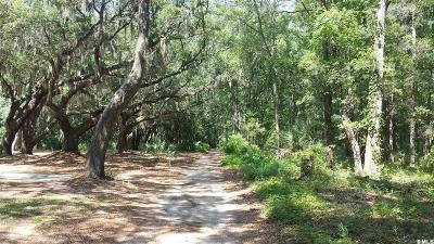 St. Helena Island SC Residential Lots & Land Closed: $38,750