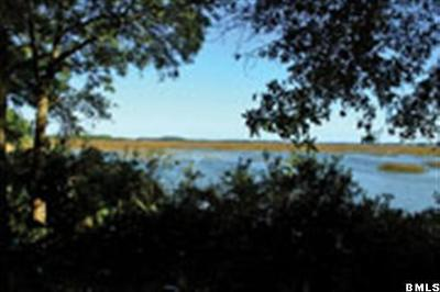 Lady's, Lady's Island, Lady'sisland, Ladys Island Residential Lots & Land For Sale: 36 Long Point Drive