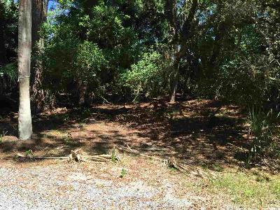 Fripp Island Residential Lots & Land For Sale: 455 Porpoise Circle