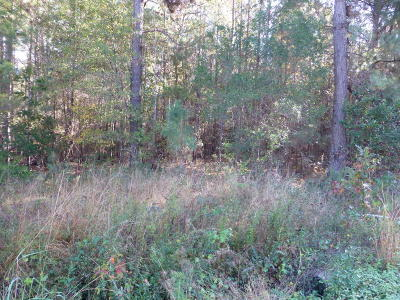 Tbd Freedom Parkway, Hardeeville, SC, 29927, Hardeeville Home For Sale