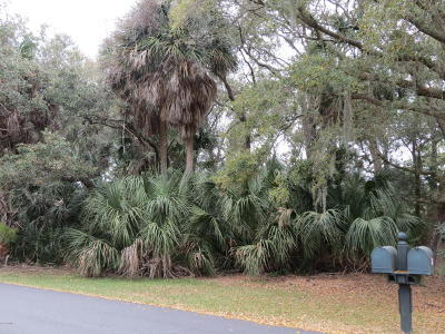 Fripp Island Residential Lots & Land For Sale: 134 Ocean Creek Boulevard
