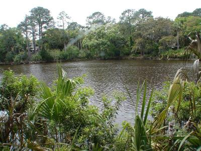 Fripp Island SC Residential Lots & Land For Sale: $129,900