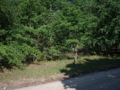 Residential Lots & Land For Sale: 395 Chelsea Lane