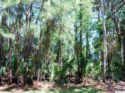 Fripp Island Residential Lots & Land For Sale: 536 Remora Drive