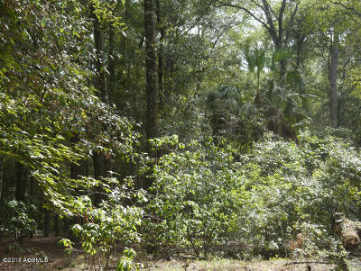 Beaufort County Residential Lots & Land For Sale: 10 Salicornia Drive