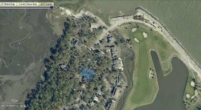 Fripp Island Residential Lots & Land For Sale: 613 Porpoise Drive