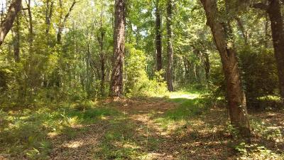 Fripp Island Residential Lots & Land For Sale: 226 Deer Run Road