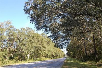 Beaufort, Beaufort Sc, Beaufot, Beufort Residential Lots & Land For Sale: 169 Laurel Bay Road