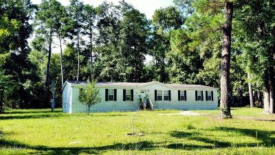 Beaufort Mobile Home For Sale: 13 W Laurel Street W