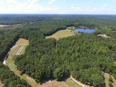 Ridgeland Residential Lots & Land For Sale: 336 R&m Plantation Drive