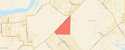 Tbd Ephraim, St. Helena Island, SC, 29920, St Helena Island Home For Sale
