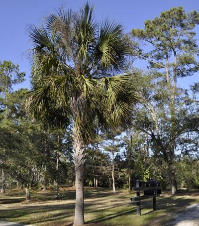 Beaufort, Beaufort Sc, Beaufot, Beufort Residential Lots & Land For Sale: 213 Willow Point Road