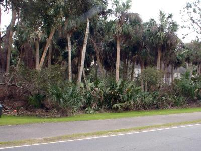 Fripp Island SC Residential Lots & Land For Sale: $135,500