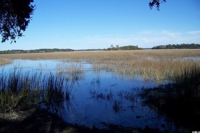 Beaufort, Beaufort Sc, Beaufot, Beufort Residential Lots & Land For Sale: 1501 Walsh Drive E