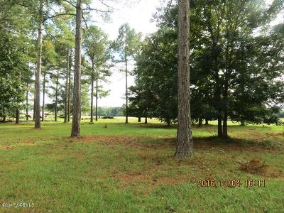 Bluffton Residential Lots & Land For Sale: 5 Great Heron Way