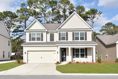 Beaufort County Single Family Home For Sale: 3850 Blue Moon Lane