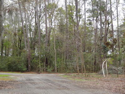 Residential Lots & Land For Sale: 1 Loggerhead Trail