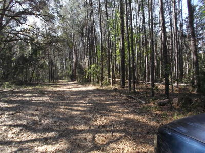 Port Royal Residential Lots & Land For Sale: 3012 Oak View Drive