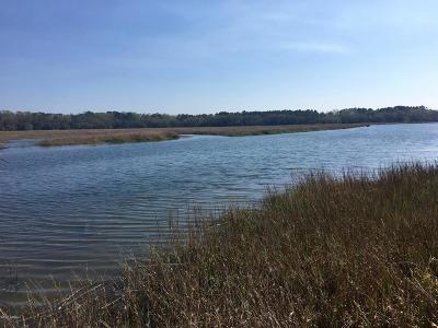 Beaufort County Residential Lots & Land For Sale: 124 Rose Island Road