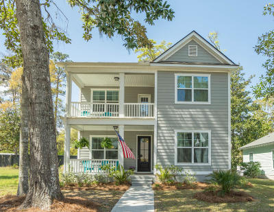 Beaufort Single Family Home For Sale: 131 Wrights Point Drive