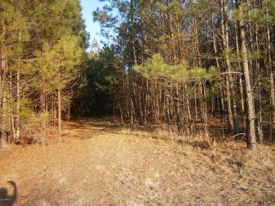 Tbd2 Off Speedway Boulevard, Hardeeville, SC, 29927, Hardeeville Home For Sale