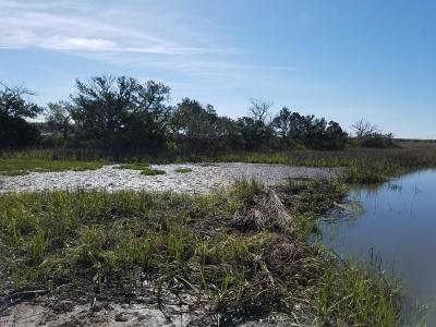 St. Helena Island SC Residential Lots & Land Closed: $20,000