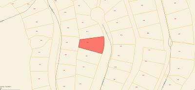 Residential Lots & Land For Sale: 109 Palmetto Place