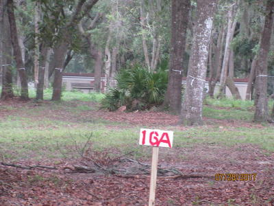 Beaufort, Beaufort Sc, Beaufot, Beufort Residential Lots & Land For Sale: 16a Miller Drive W