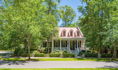 Beaufort Single Family Home For Sale: 43 St Phillips Boulevard