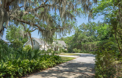 Beaufort Single Family Home For Sale: 142 Spanish Point Drive