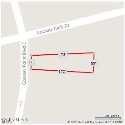 Residential Lots & Land For Sale: 228 Coosaw Point Boulevard E