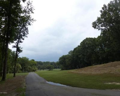 Okatie Residential Lots & Land For Sale: 127 Winding Oak Drive