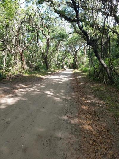 St. Helena Island SC Residential Lots & Land For Sale: $28,000