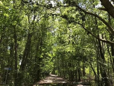 Bluffton Residential Lots & Land For Sale: 18 Davis Road