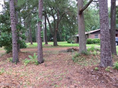 Beaufort County Single Family Home For Sale: 11 Shults Road