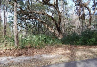 Beaufort County Residential Lots & Land For Sale: 5 S Oak Forest Drive