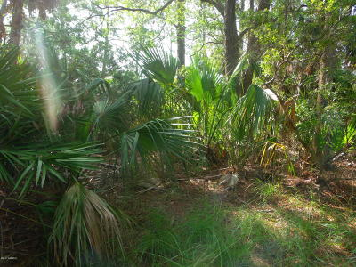 Fripp Island Residential Lots & Land For Sale: 4 Pelican