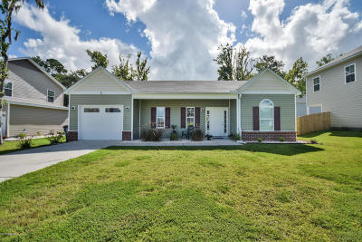 Beaufort County Single Family Home For Sale: 9 Wintergreen Drive